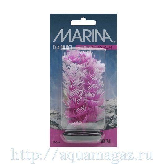 Растение Перистолистник розовый 13см
