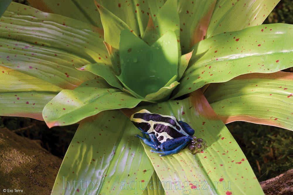 Растение пластиковое Bromelia большое