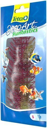 Растение Перистолистник красный S