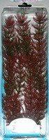 Растение Перистолистник красный 38см