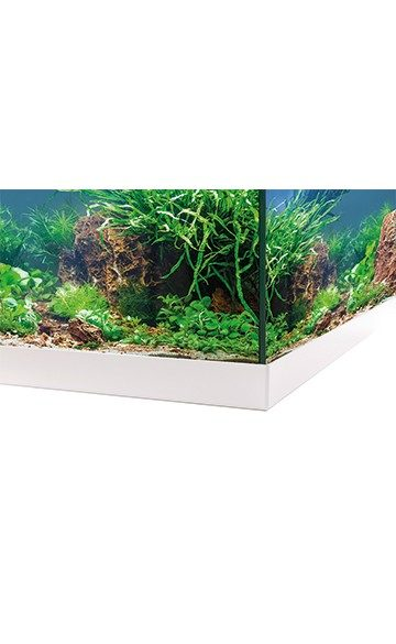 Аквариум EHEIM aquastar 54 LED белый 54л. 63x33x36 см, фото 4