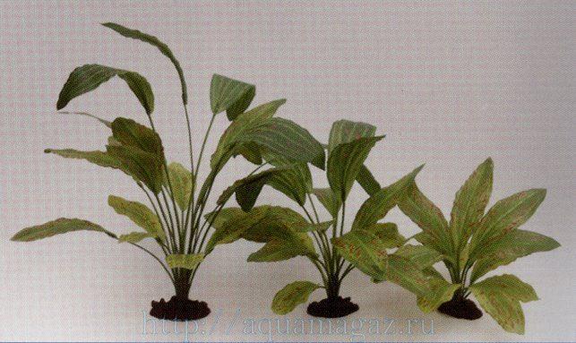 Растение Эхинодорус Оцелот Грин 13см шелковое