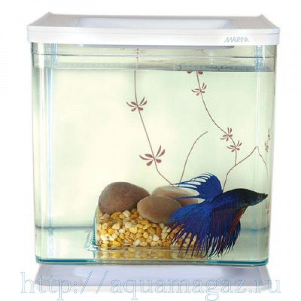 Аквариум Marina Betta Kit Contemporary, 2л, белый