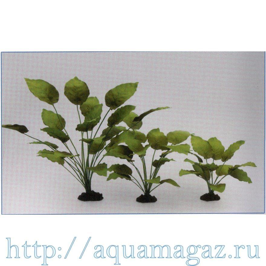 Растение Анубиас Бартера 30см шелковое