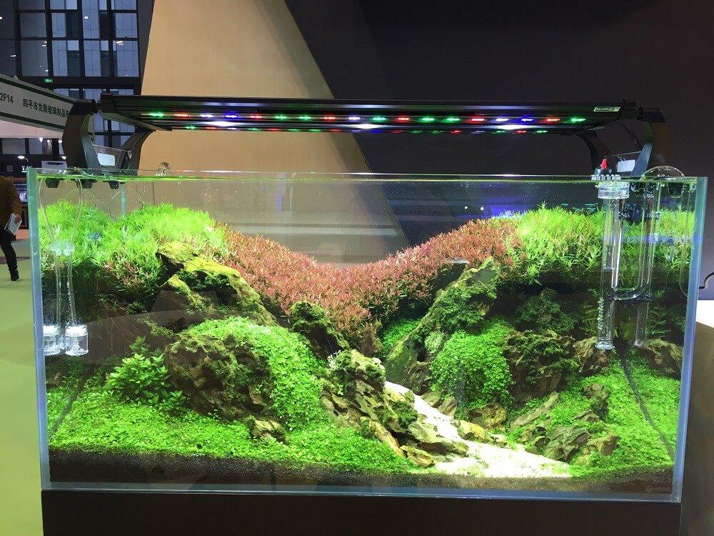 воздух и свет для аквариума фото бы