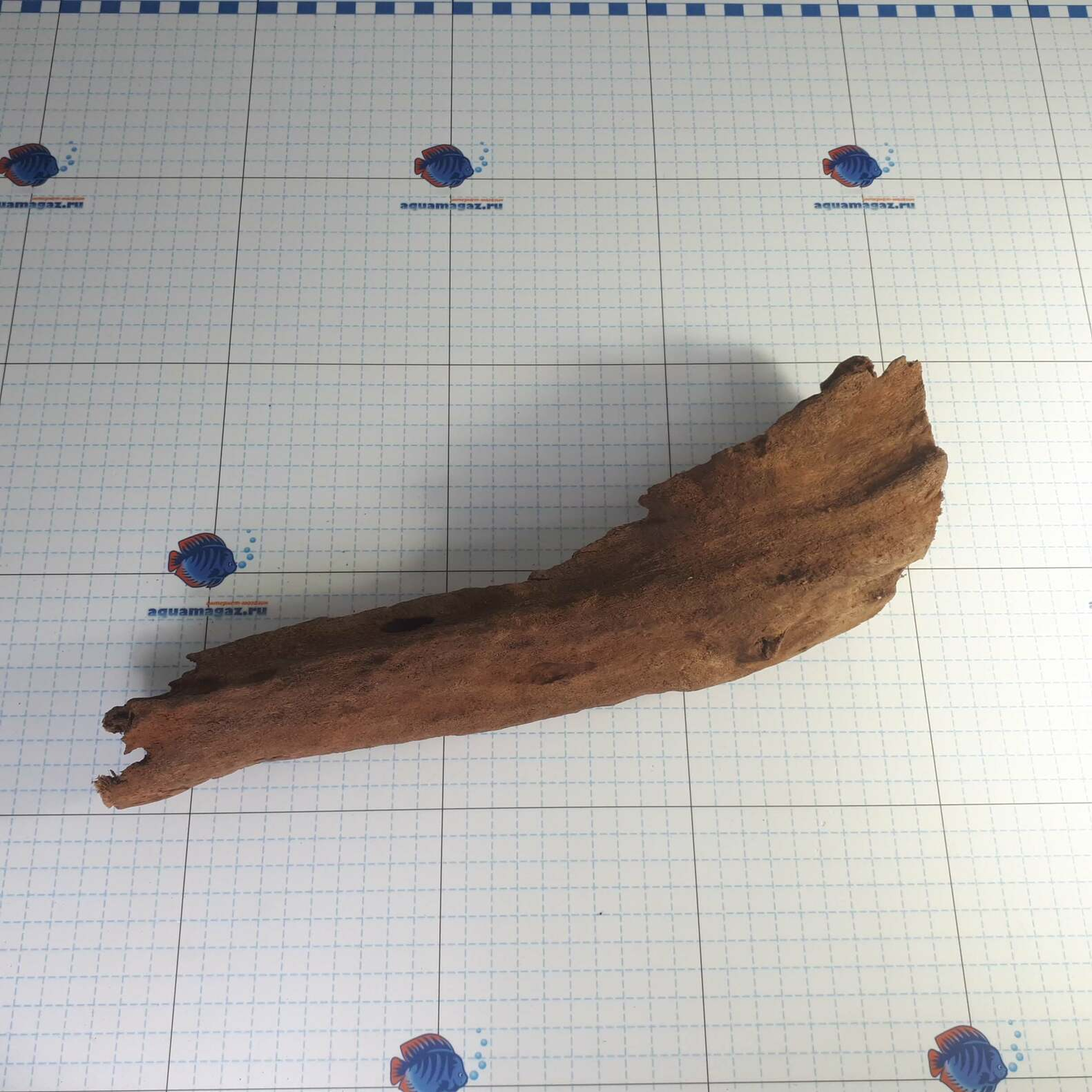 Коряга мангровая средняя 25-40 см L, фото 1