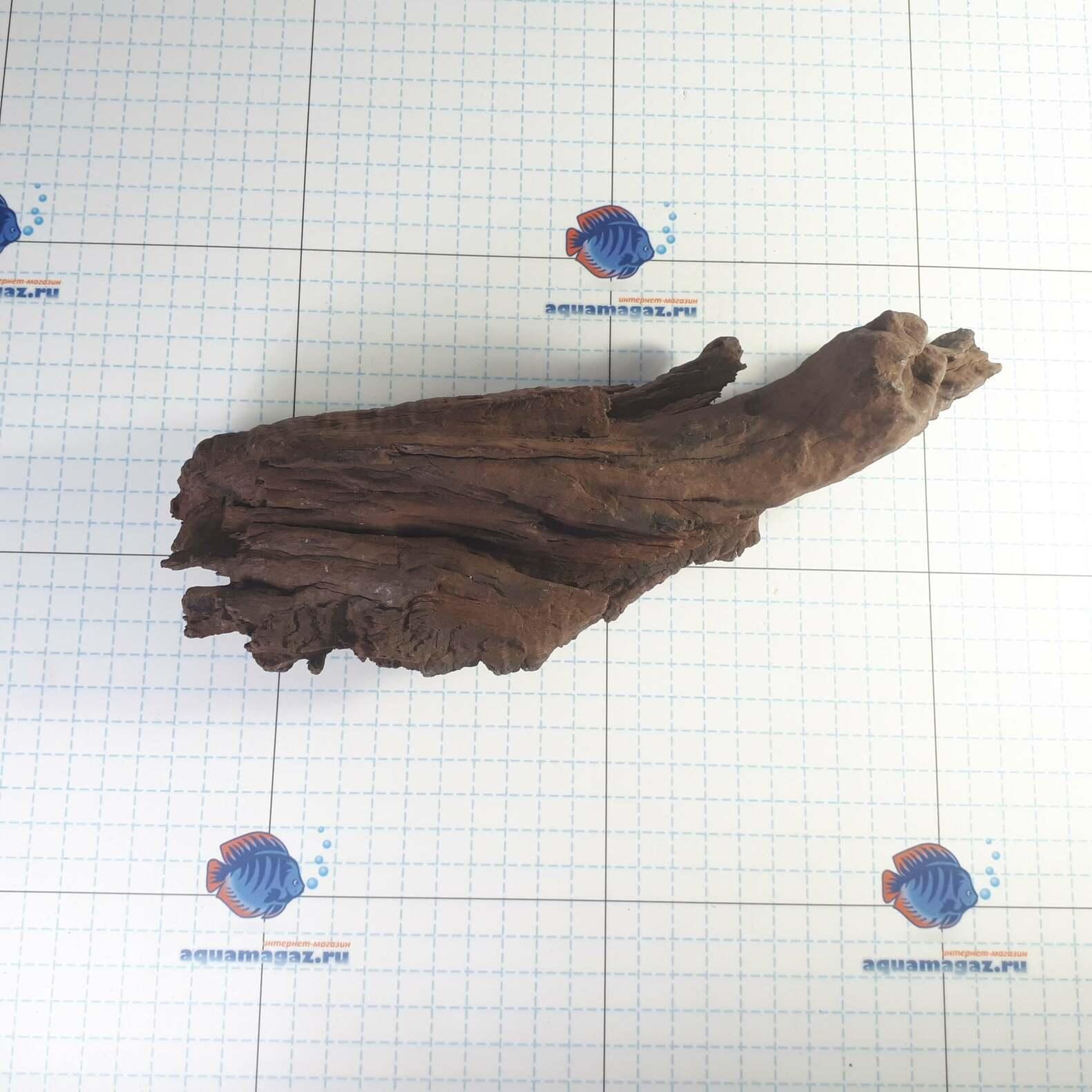 Коряга мангровая средняя 25-40 см L, фото 2