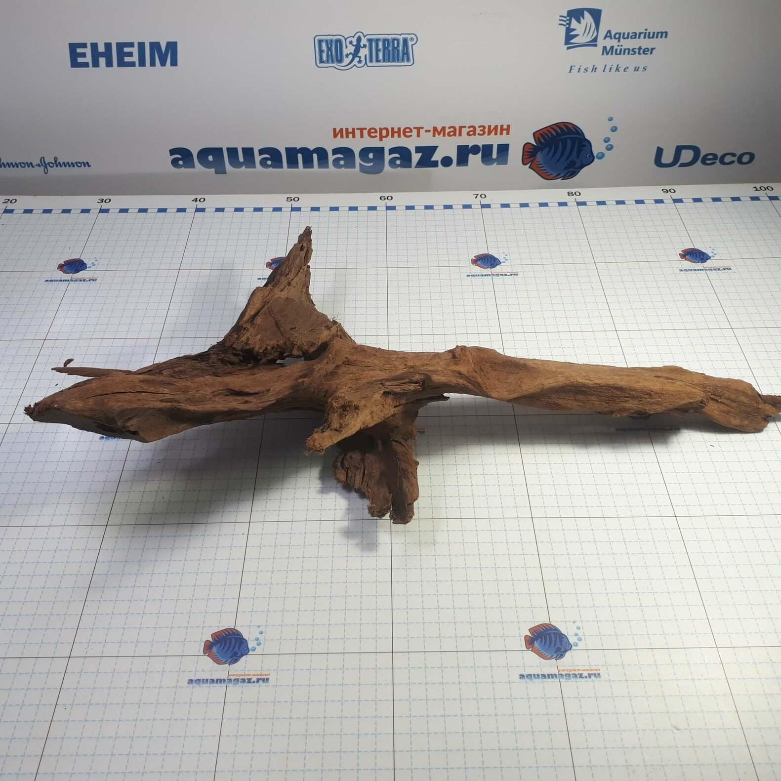 Коряга мангровая XL 35- 45см, фото 5
