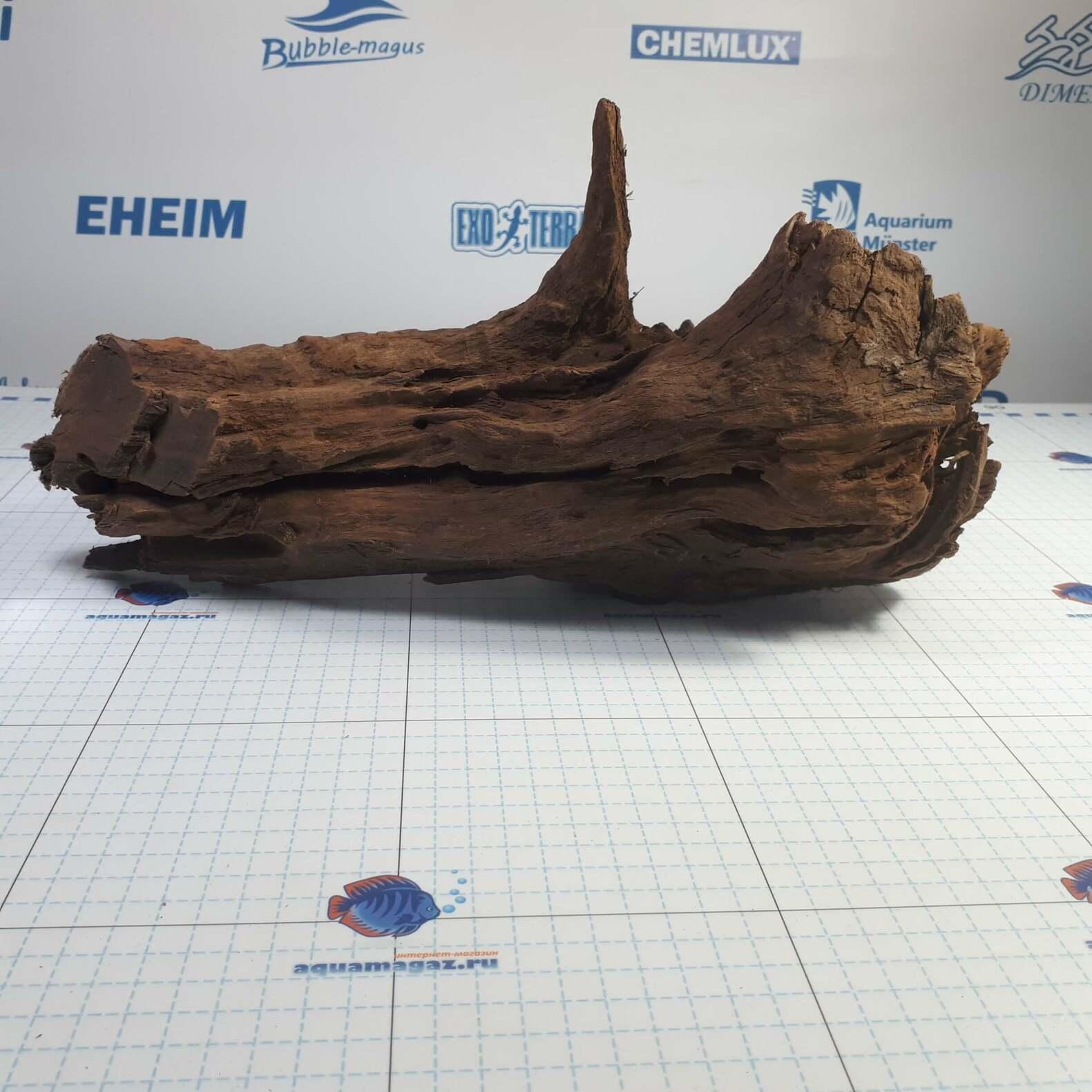 Коряга мангровая XL 35- 45см, фото 2