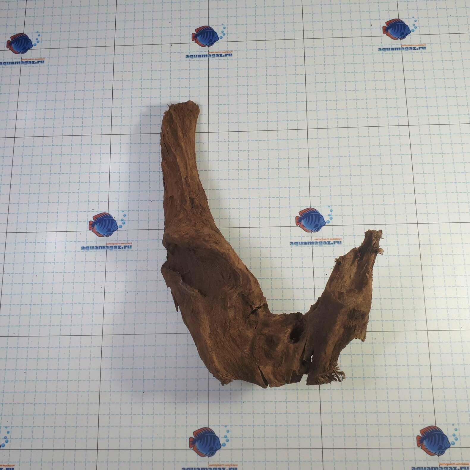 Коряга мангровая средняя 25-40 см L, фото 3