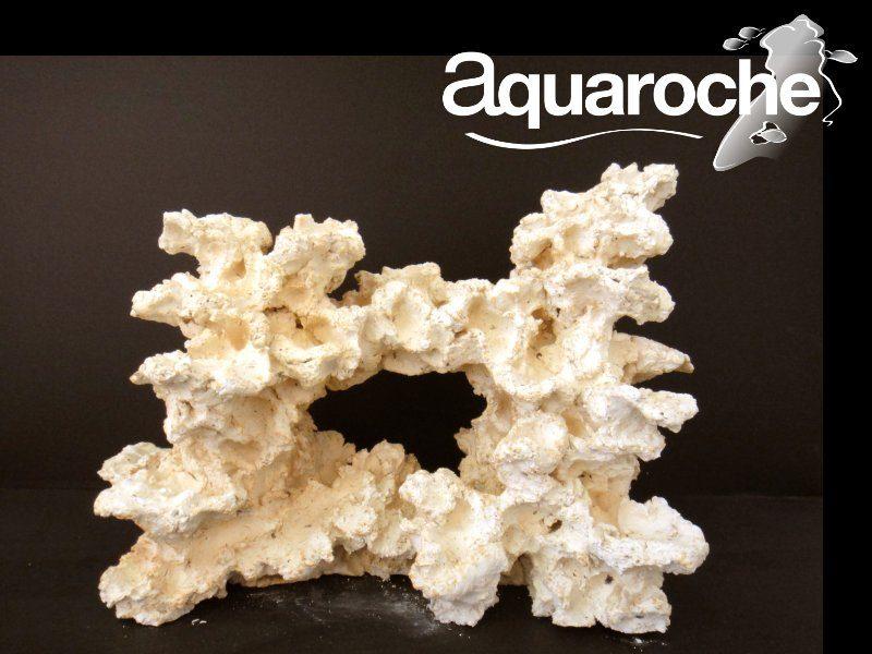 Риф большой. Высота 35-40 см., фото 1