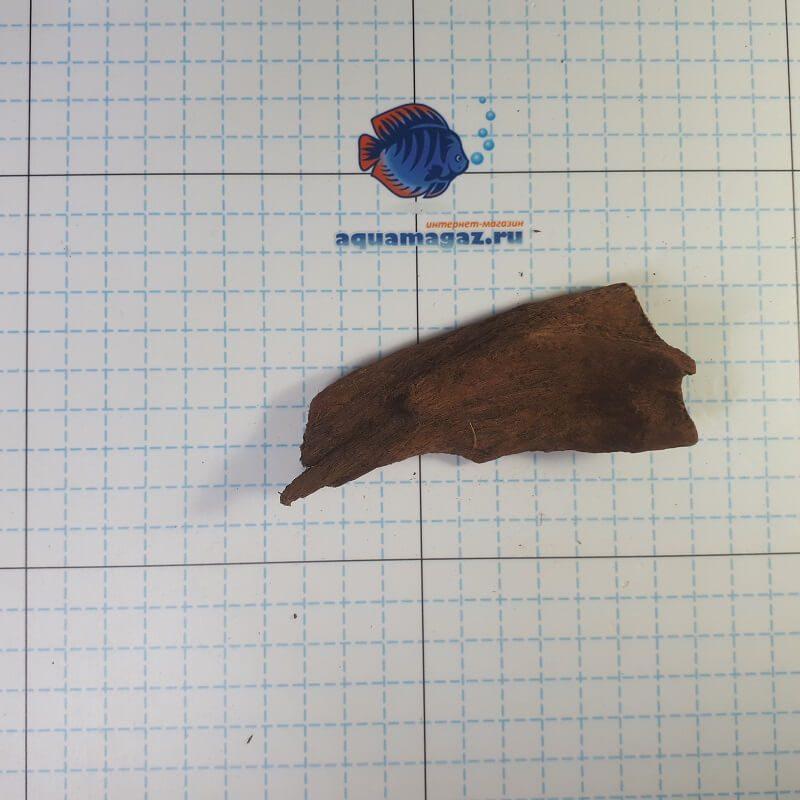 Коряга мангровая XS 6-10 см, фото 6