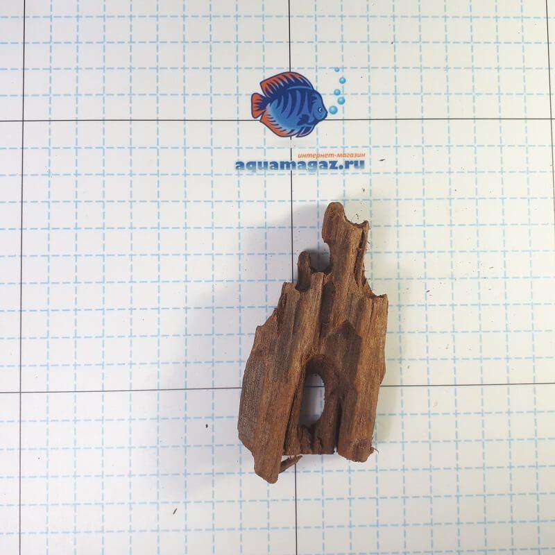 Коряга мангровая XS 6-10 см, фото 1
