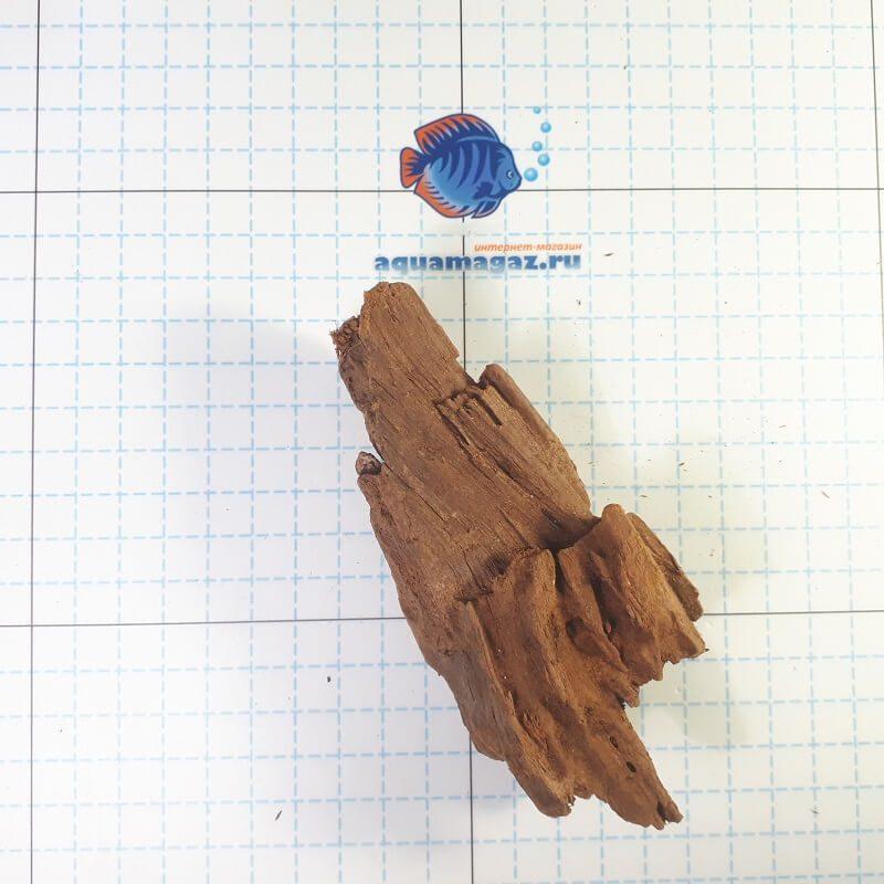 Коряга мангровая XS 6-10 см, фото 7