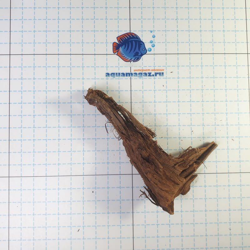 Коряга мангровая XS 6-10 см, фото 2