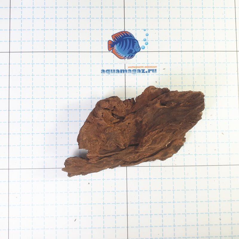 Коряга мангровая XS 6-10 см, фото 8