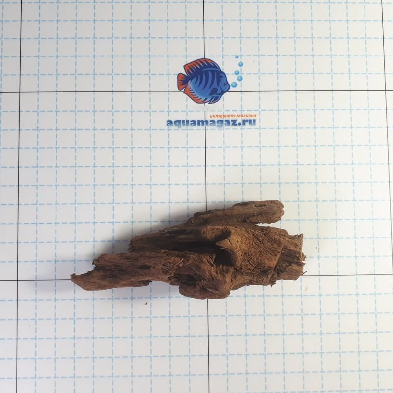 Коряга мангровая XS 6-10 см, фото 10