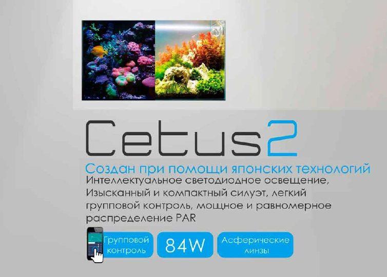 Cetus 2, фото 1