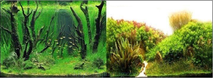 Фон двухсторонний 30см. Коряги с растениями / Растительные холмы