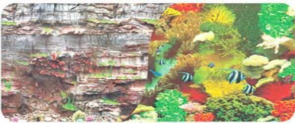 Фон двухсторонний 60см. Камни скалистая стена  Морской кораллы с рыбами