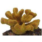 Коралл пластиковый желтый 19x13x10,5см