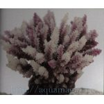 Коралл пластиковый коричневый 10,5x8,5x8см