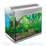 Аквариум для креветок AquaArt Shrimps Discover Line 20л 38х26х34см