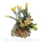 Коралл пластиковый LAY-OUT LIVE CORAL 290 x220 x330мм