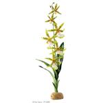 Растение Exo Terra Орхидея
