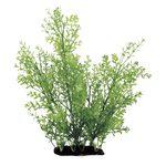 Растение Ротала 35 см Art Uniq, фото 1