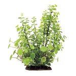 Растение Кардамин 35 см Art Uniq, фото 1
