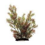 Растение Ротала индийская 35 см Art Uniq, фото 1