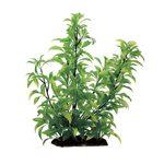 Растение Стаурогин 35 см Art Uniq, фото 1