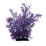 Растение Людвигия фиолетовая 35 см, фото 1