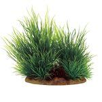 Растение Ситняг 15x10x15 см, фото 1
