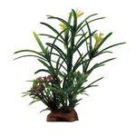 Композиция из растений Эустералис 8x7x14 см Art Uniq, фото 1