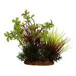 Композиция из растений Марсилия 15 см Art Uniq, фото 1