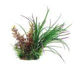 Композиция из растений Кабомба вильчатая и Гигрофила перистонадрезанная 20 см Art Uniq, фото 1