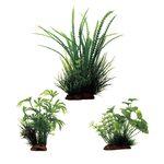Набор растений Гигрофила перистонадрезанная Абутилон Щитолистник 10-20 см 3 шт Art Uniq, фото 1