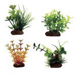 Набор растений Марсилия Глоссостигма Амбулия оранжевая Лизимахия 7-10 см 4 шт Art Uniq, фото 1