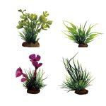 Набор растений Марсилия Бамбук Марсилия розовая Лилеопсис 7-10 см 4 шт Art Uniq, фото 1
