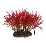 Растение Аммания изящная 10-12 см Art Uniq, фото 1