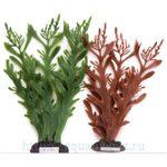Растение Коралл ветвистый, 20см, коричневое