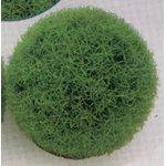 Растение Коврик-шар D14см зеленое
