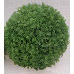 Растение Коврик-шар D22см зеленое