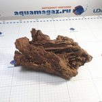 Коряга мангровая XL 35- 45см, фото 1
