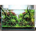 Комплект для запуска природного аквариума ADA CUBE GARDEN 60-P 60X30X36, фото 1