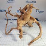 Коряга пустынная L 25-35 см, фото 1