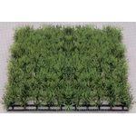 Растение Коврик 25х25см, зеленое