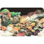 Фон односторонний 60см. Кораллы (черный)